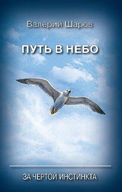 Валерий Шаров - Путь в небо. За чертой инстинкта