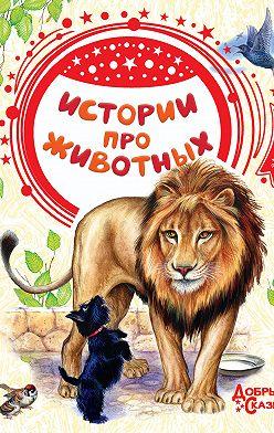 Лев Толстой - Истории про животных