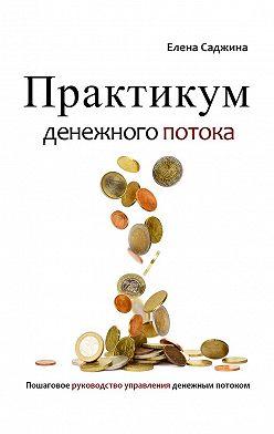 Елена Саджина - Практикум денежного потока. Пошаговое руководство управления денежным потоком