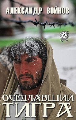 Александр Войнов - Оседлавший тигра