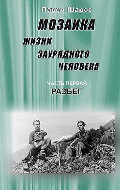 Павел Шаров - Мозаика жизни заурядного человека. Часть первая. Разбег