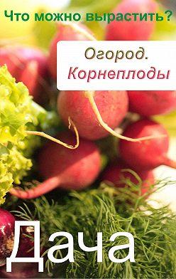 Неустановленный автор - Огород. Корнеплоды. Что можно вырастить?