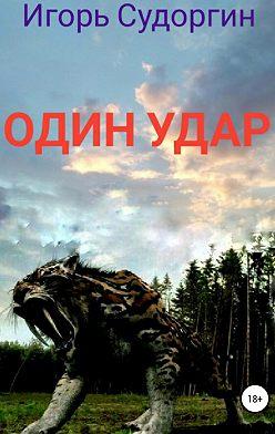 Игорь Судоргин - Один удар