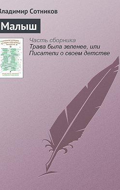 Владимир Сотников - Малыш