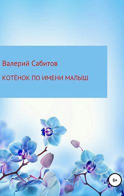 Валерий Сабитов - Котёнок по имени Малыш