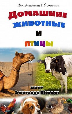 Александр Шурлов - Домашние животные иптицы