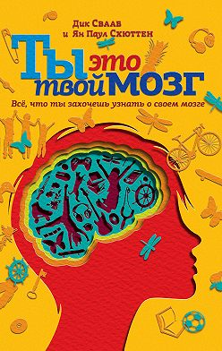 Дик Свааб - Ты это твой мозг: Всё, что ты захочешь узнать о своем мозге
