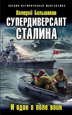 Валерий Большаков - Супердиверсант Сталина. И один в поле воин