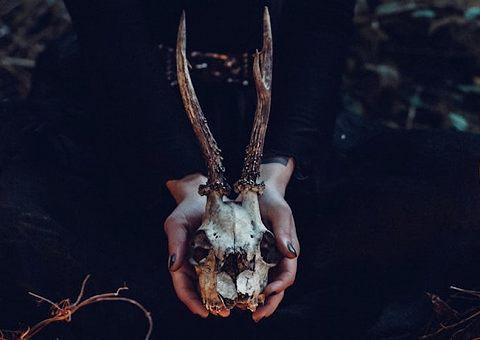 Метла и зелье: книги про ведьм