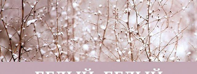 Белый, белый снег
