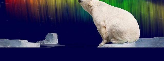 Позову Большой Медведицы. Записки полярного инспектора