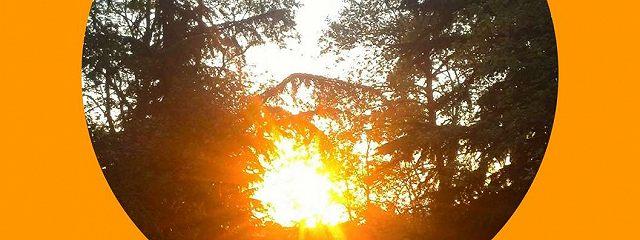 В той стороне, где жизнь и солнце