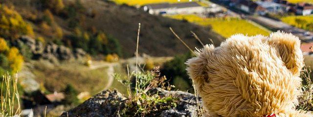 История маленького плюшевого медвежонка