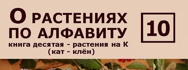 О растениях по алфавиту. Книга десятая. Растения на К (кат – клён)