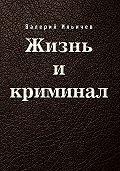 Валерий Ильичев -Жизнь и криминал