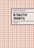 Виктор Александрович Вержбицкий -Впасти лифта. Рассказ