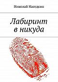 Николай Наседкин - Лабиринт вникуда