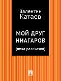 Валентин Катаев - Мой друг Ниагаров (цикл рассказов)