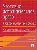 Александр Бриллиантов -Уголовно-исполнительное право в вопросах, ответах и схемах. Учебное пособие