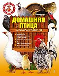 Т. А. Михайлова -Домашняя птица в личном хозяйстве
