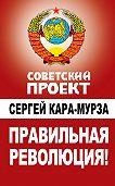 Сергей Кара-Мурза -Правильная революция!