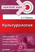 Анатолий Соломонович Кармин - Культурология. Краткий курс