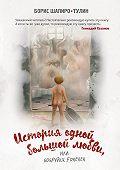 Борис Шапиро-Тулин -История одной большой любви, или Бобруйск forever (сборник)