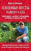 Виктор Жвакин -Плодовые кусты вашего сада