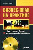 Дмитрий Алексеевич Рябых -Бизнес-план на практике