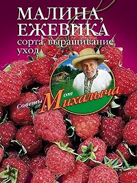 Николай Звонарев -Малина, ежевика. Сорта, выращивание, уход