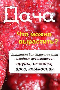 Илья Мельников - Что можно вырастить? Энциклопедия выращивания ягодных кустарников: груша, ежевика, ирга, крыжовник