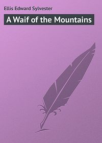 Edward Ellis -A Waif of the Mountains