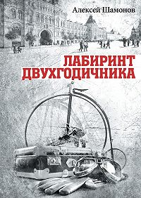Алексей Шамонов -Лабиринт двухгодичника