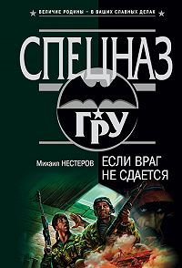 Михаил Нестеров - Если враг не сдается