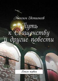 Максим Евстигнеев -Путь к Священству и другие повести. Книга первая