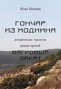 Илья Немцов -Багровый закат