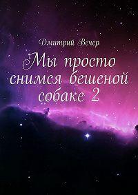 Дмитрий Вечер -Мы просто снимся бешеной собаке2