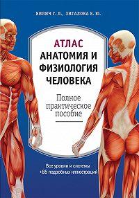 Елена Зигалова -Атлас: анатомия и физиология человека. Полное практическое пособие