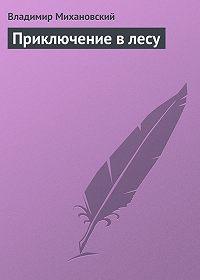 Владимир Михановский - Приключение в лесу