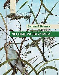 Виталий Бианки -Лесные разведчики (сборник)