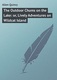 Quincy Allen -The Outdoor Chums on the Lake: or, Lively Adventures on Wildcat Island