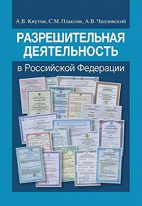 Александр Кнутов -Разрешительная деятельность в Российской Федерации