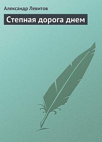 Александр Левитов - Степная дорога днем