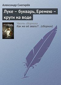 Александр Снегирёв - Луке – букварь, Еремею – круги на воде