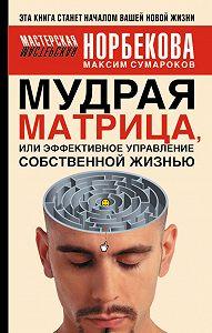 Максим Сумароков -Мудрая матрица, или Эффективное управление собственной жизнью