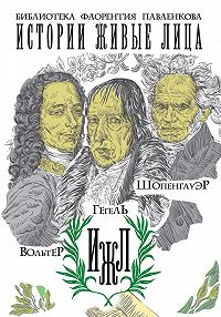 И. М. Каренин -Вольтер. Гегель. Шопенгауэр (сборник)
