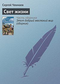 Сергей Чекмаев -Свет жизни