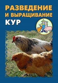 Илья Мельников -Разведение и выращивание кур