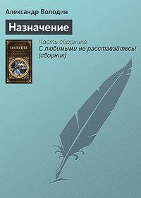 Александр Володин - Назначение