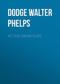 Walter Dodge -As the Crow Flies